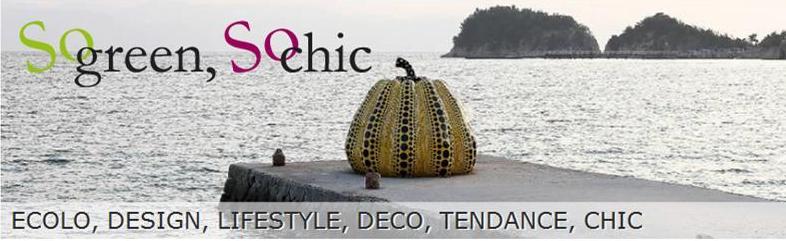 blog design-ecolo